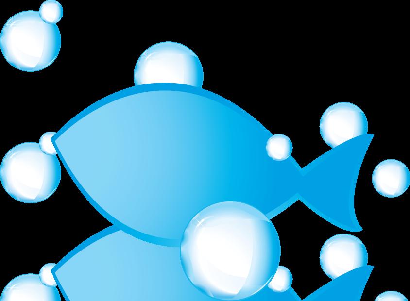 Alssund Akvarieforening